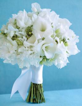 Bouquet -  (7)