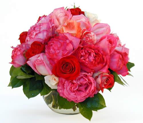 Bouquet -  (8)